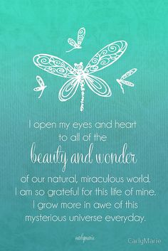 Beautiful Affirmation - Beauty and Wonder Mantra by CarlyMarie Positive Mind, Positive Thoughts, Positive Quotes, Mantra, Meditation Musik, Meditation Scripts, Chakra Meditation, Mysterious Universe, Mind Body Soul