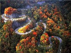 Must find this hwy.                               Switchback Highway,Chattanooga, Tennessee