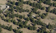Magnolia Cemetery is a sprawling cemetery with graves dating from the early 1800's.  Many persons prominent in Georgia history are interred in the shadows of the hundreds of magnolia trees for which the cemetery is named.  http://www.augustaga.gov/352/Magnolia All aerial photographs derived from oblique orthophotography by Pictometery International.  www.pictometry.com