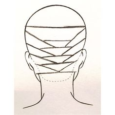 Parting and prepping for balayage.... Helpful diagram!!