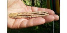 W górach Ałtaju znaleziono starożytne harfy żydowskie. Przedmioty liczą  1700 lat » Historykon.pl