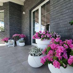 Modern Landscaping, Outdoor Landscaping, Front Yard Landscaping, Outdoor Gardens, Landscaping Ideas, Front Yard Garden Design, Backyard Garden Design, Yard Design, Front Design