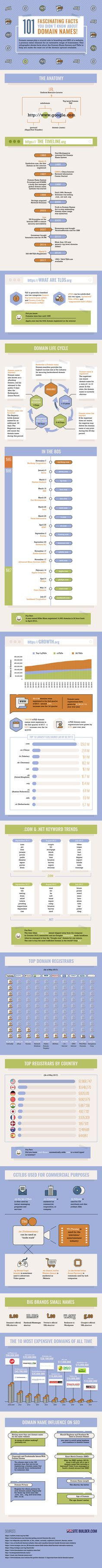 101 Fascinating Facts You Didn't Know About Domain Names - infographic