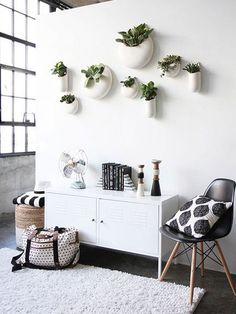 Macetas colgadas en la pared