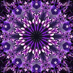 Violet Passion Kaleidoscope by fantasytripp