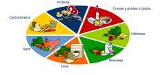 Dietas Balanceadas: Dietas balanceadas: Su Papel Para Vivir Sanamente