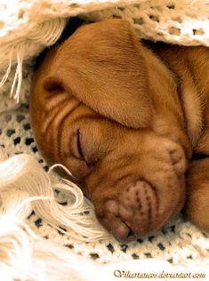 So little... So sweet...