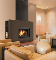 Contemporary fireplace (wood-burning closed hearth) KUBIC MAX  BRISACH SAS