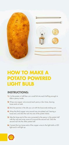 Need a light? Use potato power! With this science experiment for kids, learn how… Need a light? Use potato power! With this science experiment for kids, learn how chemical reactions take place between two dissimilar metals and how to create voltage. Physical Science, Teaching Science, Science For Kids, Science Fun, Summer Science, Expirements For Kids, Science Week, Science Projects For Kids, Stem For Kids