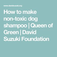 How to make non-toxic dog shampoo | Queen of Green | David Suzuki Foundation