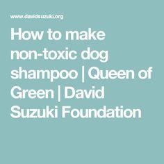 How to make non-toxic dog shampoo | Queen of Green | David Suzuki Foundation