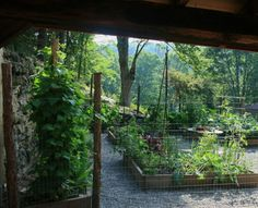 Great story on building a kitchen garden in four months.