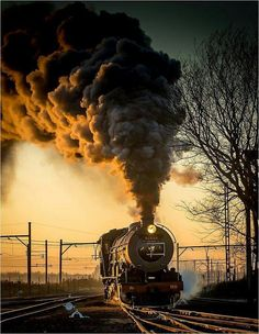 trenes  teamo