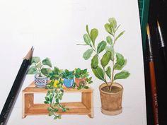 Diy Crafts, Plants, Instagram, Home Decor, Homemade Home Decor, Flora, Homemade, Diy Home Crafts, Plant