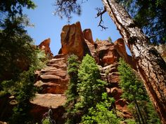 Hiking In Sedona, Arizona Visit Sedona, Sedona Arizona, Monument Valley, Utah, Grand Canyon, Fork, This Is Us, Road Trip, Hiking