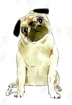 Sitting Pug Art Print by gooberella Pug Illustration, Illustrations, Pug Cartoon, Cartoon Drawings, Pug Mug, Pugs And Kisses, Pug Pictures, Pug Love, Dog Art