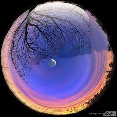 Wow! Cool Moon Image!