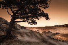 horizon by Lara Zanarini on 500px