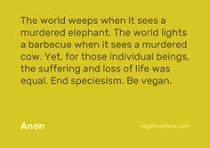 reason to be vegan #vegan