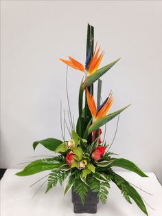 The bamboo is the base and the bird of paradise is the Line within the arrangement Exotic Flowers, Faux Flowers, Tropical Flowers, Purple Flowers, Cactus Flower, Yellow Roses, Pink Roses, Tropical Floral Arrangements, Large Flower Arrangements