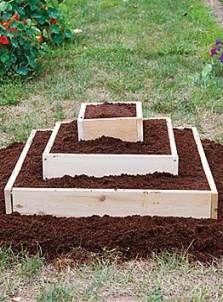 New garden boxes raised beds easy diy Ideas Raised Planter, Raised Garden Beds, Raised Beds, Tiered Planter, Gardening Supplies, Flower Garden Layouts, Strawberry Garden, Strawberry Beds, Strawberry Planters