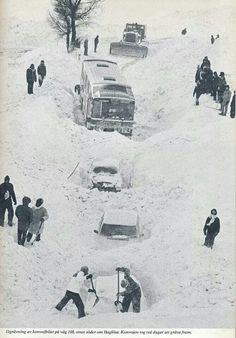 Unusual record snowfall. The winter of 1979, Skåne, Southern part of Sweden.