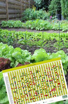 8 Besten Gartenkalender Bilder Auf Pinterest Gartenarbeit