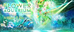 アクアパーク品川は、音・光・映像、生き物たちが融合する最先端エンタメ施設です。
