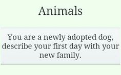 prompt -- animals: you are a newly adopted dog...describe your first day with your new family
