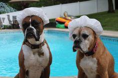 Lunch ladies, poolside :)