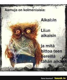 Aamuja on kolmenlaisia. Funny Meems, Beautiful Morning, Cute Pictures, Life Is Good, Haha, Motivational Quotes, Jokes, Thoughts, Humor
