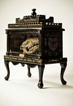 """Unique, uncommon display box.  Reminds me of Uncommon Objects in Austin or the show """"Oddities"""" about Obscura Antiques in NYC.  A conversation piece, for sure."""