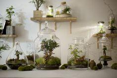 Atelier Green Factory - Paris 10è - rue Sampaix