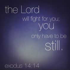 """And Moses said to the people, ""Do not be afraid. Stand still, and see the salvation of the LORD, WHICH HE WILL ACCOMPLISH FOR YOU TODAY. For the Egyptians whom you see today, you shall see again no more forever. 14 The LORD will fight for you, and you shall hold your peace.""  Exodus 14:13-14"
