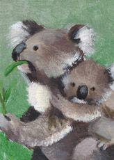 two koalas; artwork by Zefi Femelis