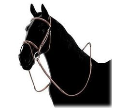 Equiline Bridle with Flash Noseband