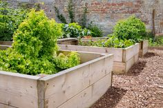 It's back to school season, and many school gardens, landscapes and sports fields aren't what they used to be. Learn how some schools are saving water and creating innovative outdoor classrooms: Raised Garden Beds, Raised Beds, Raised Bed Frame, Benefits Of Gardening, Outdoor Classroom, Save Water, Irrigation, Outdoor Furniture, Outdoor Decor