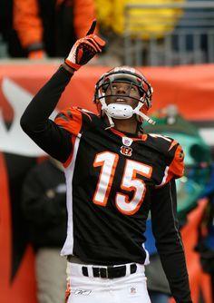 14 Best Cincinnati Bengals Andy Dalton images  8bf096c7c