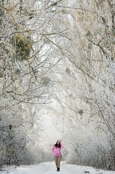 Hoarfrost covered wonderland in Hungary, Europe Jack Frost, Cinematography, Hungary, Wonderland, Europe, Cover, Photography, Wedding, Outdoor