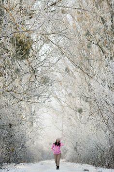 Hoarfrost covered wonderland in Hungary, Europe