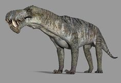 Prehistoric animals: The Inostrancevia. - Inostrancevia was een geslacht van viervoeter uit de Gorgonopsia, een onderorde van de Therapsida e