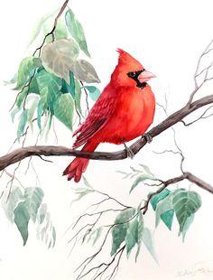 watercolor cardinal images | Cardinal bird original watercolor painting 12 X 9 by ORIGINALONLY