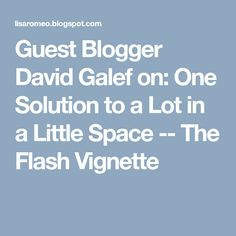 Guest Blogger David Galef on: One Solution to a Lot in a Little Space -- The Flash Vignette