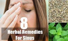 8 Herbal Remedies For Sinus