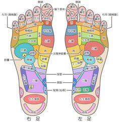 【体の不調を教えてくれる?】足裏のツボが、体のどこに対応しているのかわかる図 | COROBUZZ