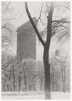 Through Alfred Stieglitz's dedicated photographic work of a half century, he tirelessly promoted photography as a fine art, gathering around him first Pictorialist and then modernist photographers. Alfred Stieglitz, Straight Photography, Flatiron Building, Image Paper, Parthenon, Jewish Art, Art Institute Of Chicago, Artistic Photography, Flat Iron