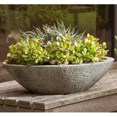Product Image for Campania Celine Planter in Alpine Stone 1 out of 3