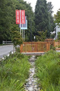 Bioswale - designed to remove silt and pollution from surface runoff water | seven35, North Vancouver
