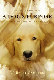 A Dog's Purpose (2017)     -    A dog looks to discover his purpose in life over the course of several lifetimes and owners.  -   Director: Lasse Hallström  -   Writers: W. Bruce Cameron (novel), Cathryn Michon (screenplay)  -   Stars: Britt Robertson, Bradley Cooper, Dennis Quaid  -    COMEDY / DRAMA   RELEASE DATE:  January 27, 2017