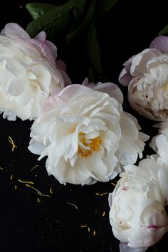 white peonies (if we can get them)